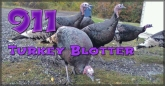 911 Turkey Blotter